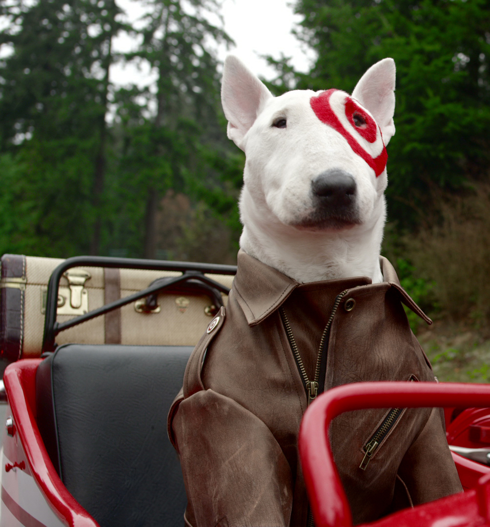 Video target readies first canadian campaign marketing What kind of dog is the target mascot