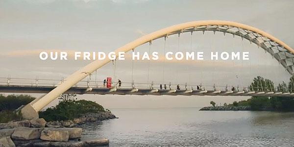Firdge-has-come-home