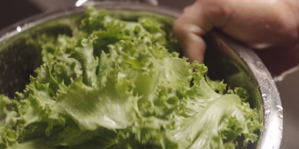 mcdonald s and real lettuce Wendy's attaches a camera to lettuce to promote how  google maps targets new yorkers with real-time data  wendy's is, however, ahead of mcdonald's,.